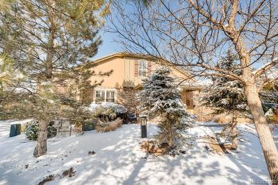 Highlands Ranch Condo/Townhouse Under Contract: 9002 Old Tom Morris Circle