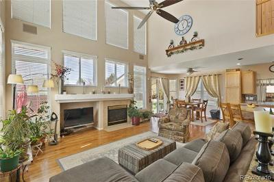 Riverdale Park Single Family Home Active: 13245 Krameria Street
