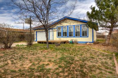 Pierce Single Family Home Under Contract: 207 Cave Avenue