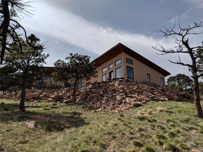 Lyons Single Family Home Active: 15 Pyrite Way