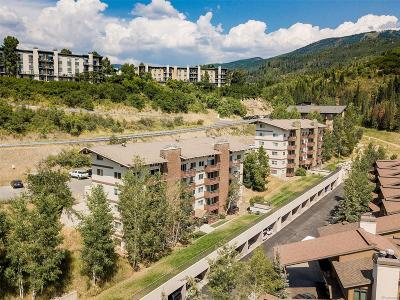 Steamboat Springs Condo/Townhouse Active: 2235 Storm Meadows Drive #T-24300