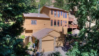 Evergreen Single Family Home Active: 551 Aspen Drive
