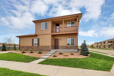 Longmont Condo/Townhouse Under Contract: 1206 Bistre Street
