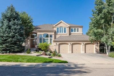 Boulder County Single Family Home Active: 777 Niwot Ridge Lane