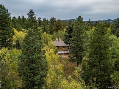 Nederland Single Family Home Under Contract: 47 Conifer Drive