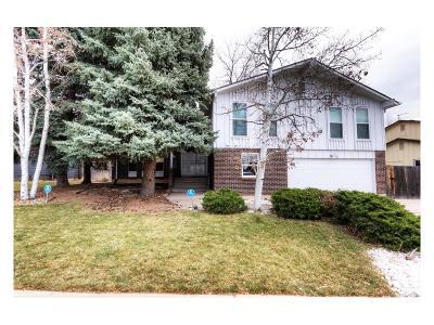 Denver Single Family Home Active: 4058 South Wisteria Way