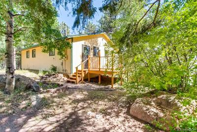 Conifer Single Family Home Under Contract: 12276 Styve Road