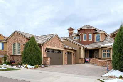 Highlands Ranch Condo/Townhouse Under Contract: 9199 Viaggio Way