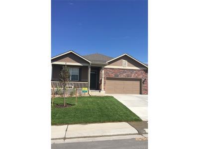 Thornton Single Family Home Under Contract: 13672 Valentia Street
