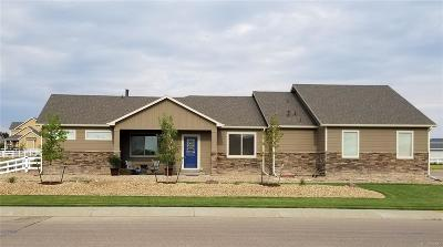 Fort Lupton Single Family Home Active: 1631 Virginia Drive