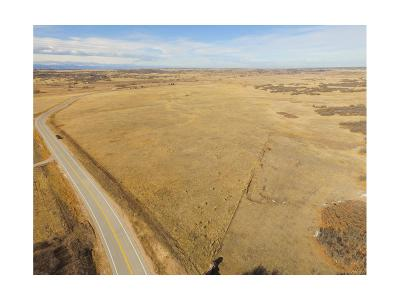 Castle Rock Residential Lots & Land Active: South Lake Gulch Road