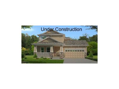 Monument Single Family Home Under Contract: 1739 Willow Park Way