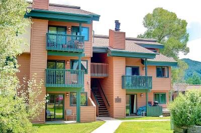 Steamboat Springs Condo/Townhouse Active: 540 Ore House Plaza #A-101