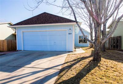 Longmont Single Family Home Active: 804 Hayden Court