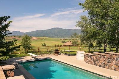 Steamboat Springs CO Single Family Home Active: $2,325,000