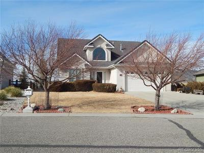 Salida Single Family Home Under Contract: 14 Silver Spruce Drive