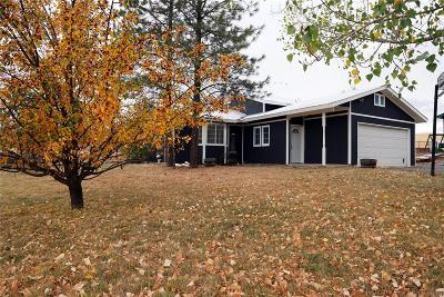 Routt County Single Family Home Active: 40570 Anchor Way