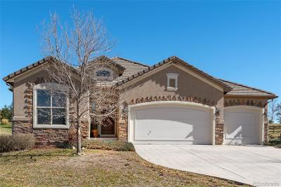Flying Horse Single Family Home Active: 13755 Firefall Court