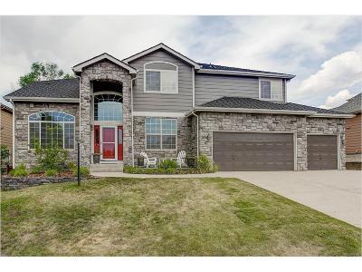 Plum Creek, Plum Creek Fairway, Plum Creek South Single Family Home Active: 1081 Foursome Drive