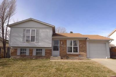 Single Family Home Under Contract: 4341 South Wright Way
