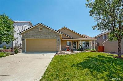 Aurora Single Family Home Active: 5394 South Valdai Way