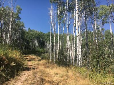 Steamboat Springs Residential Lots & Land Active: 28100 #b Grouse Creek Park Rd