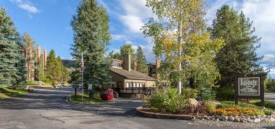 Steamboat Springs CO Condo/Townhouse Under Contract: $535,000