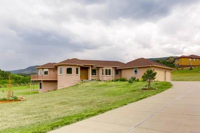 Larkspur CO Single Family Home Active: $595,000