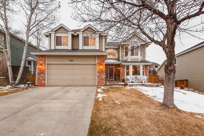 Highlands Ranch CO Single Family Home Under Contract: $550,000