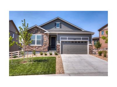 Crystal Valley, Crystal Valley Ranch Single Family Home Under Contract: 5695 Echo Hollow Street