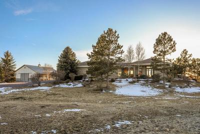 Douglas County Single Family Home Under Contract: 1025 East Rim Road