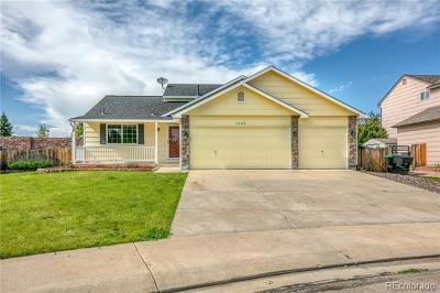 Longmont Single Family Home Active: 1440 Cedarwood Drive