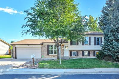 Broomfield Single Family Home Active: 1024 Maple Drive