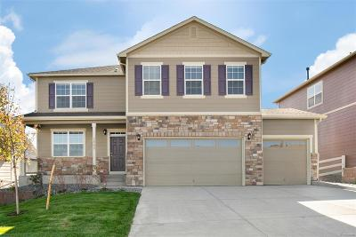 Castle Rock Single Family Home Active: 5880 High Timber Circle