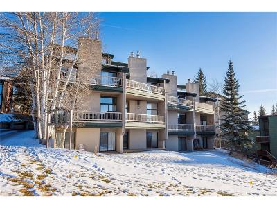 Steamboat Springs Condo/Townhouse Under Contract: 2337 Ski Trail Court #6
