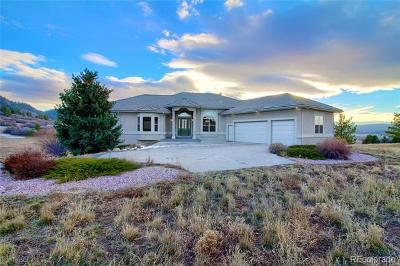 Castle Rock Single Family Home Active: 529 Summer Mist Circle
