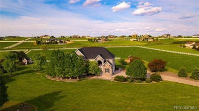 Severance Single Family Home Active: 39348 Rangeview Drive
