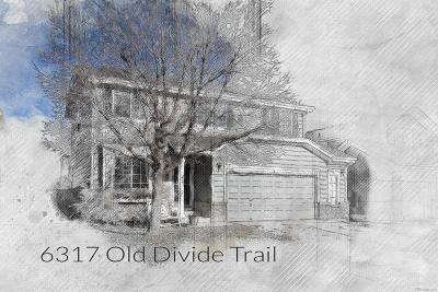 Parker Single Family Home Under Contract: 6317 Old Divide Trail