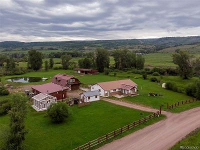 Single Family Home Active: 27400 County Road 21