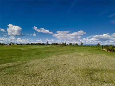 Castle Pines Village, Castle Pines Villages Residential Lots & Land Active: 6433 Holy Cross Court
