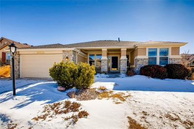 Pine Creek Single Family Home Under Contract: 10211 Murmuring Pine Court