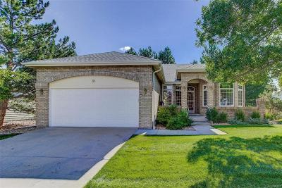 Highlands Ranch Single Family Home Active: 58 Canongate Lane