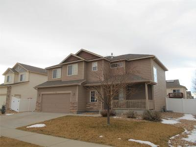 Mead Single Family Home Under Contract: 16315 9th Street