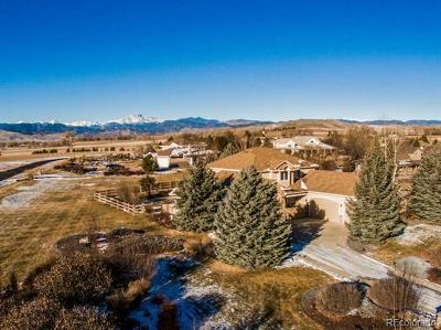 Longmont Single Family Home Active: 8903 Prairie Knoll Drive