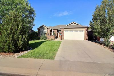 Greeley Single Family Home Active: 451 46th Avenue