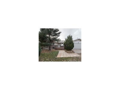 Arapahoe County Single Family Home Active: 137 South Grandbay Circle