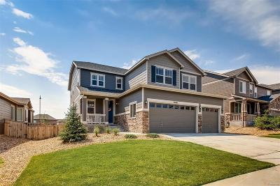 Castle Rock Single Family Home Active: 7686 Blue Water Drive