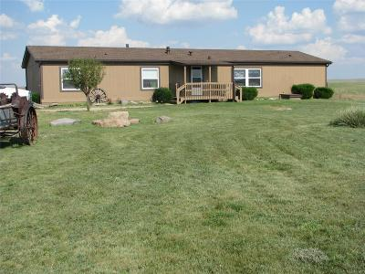 Elbert County Single Family Home Active: 27205 Private Road 139