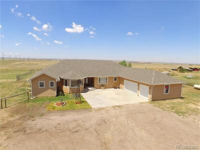 Arapahoe County Single Family Home Active: 4225 South County Road 193