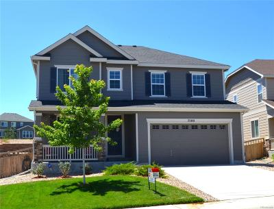 Castle Rock Single Family Home Active: 7500 Blue Water Drive